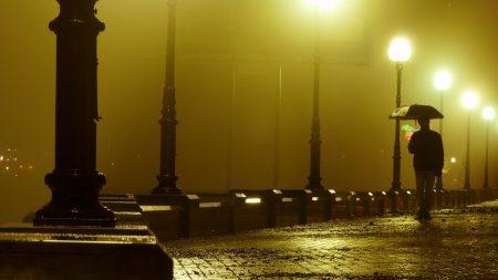 road, bridge, rain