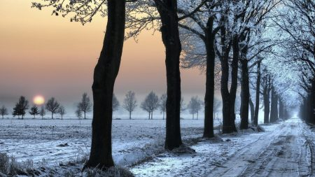 road, decline, frosts