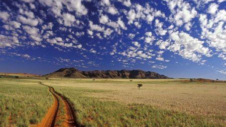 road, dirt, prairie