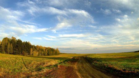 road, field, sky