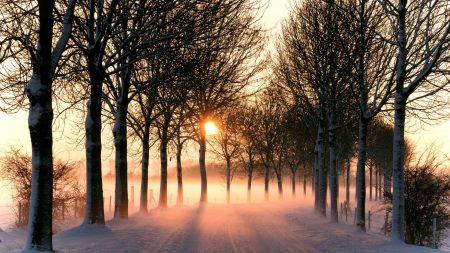 road, snow, winter