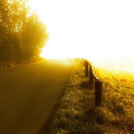 road, sunlight, turn