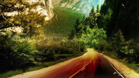 road, wood, flora