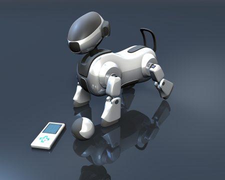 robot, dog, player