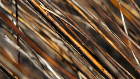 rods, wooden, brown