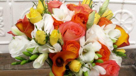 rose, buds, calla lilies