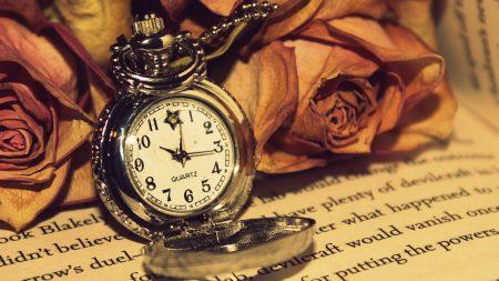 rose, clock, reading