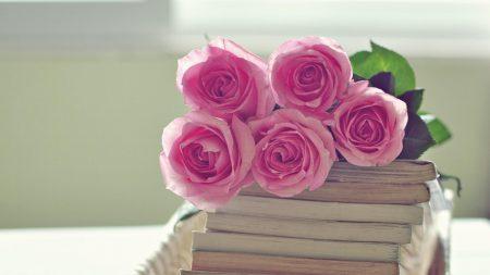 rose, flowers, bouquet