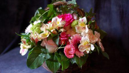 rose, gerbera, alstroemeria