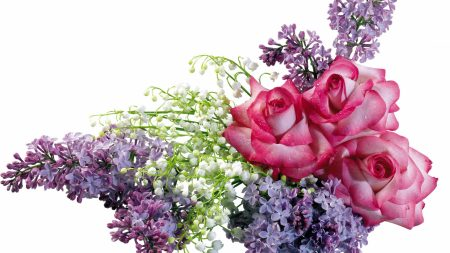 rose, lilys of the valley, lilacs