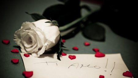 rose, note, hearts