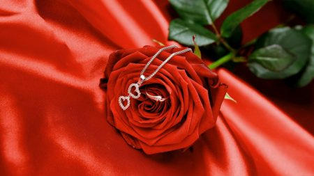 rose, red, jewelry