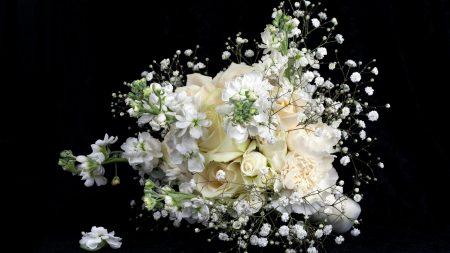 roses, babys breath, bouquet