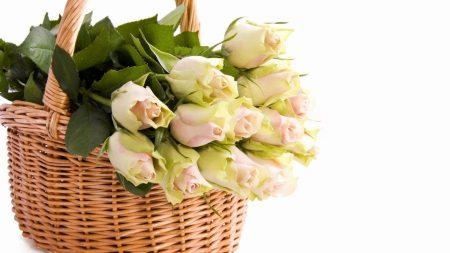 roses, basket, bouquet