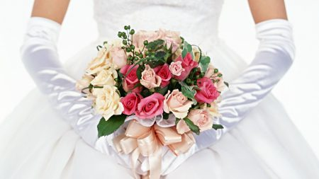 roses, bouquet, bow-knot