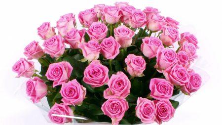 roses, bouquet, large