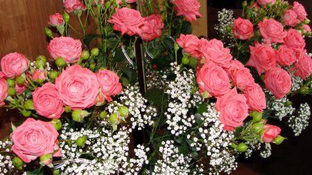 roses, bouquet, mirror