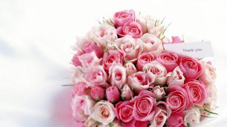 roses, bouquet, romance