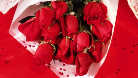 roses, bouquet, wrap