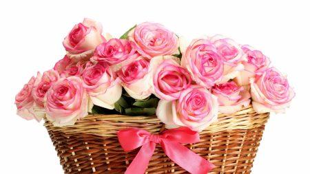 roses, bouquets, basket