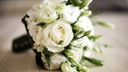 roses, bouquets, greens