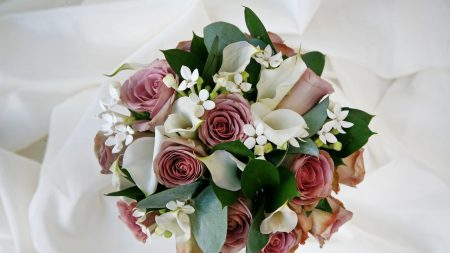 roses, calla lilies, flower