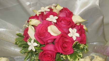 roses, calla lilies, flowers