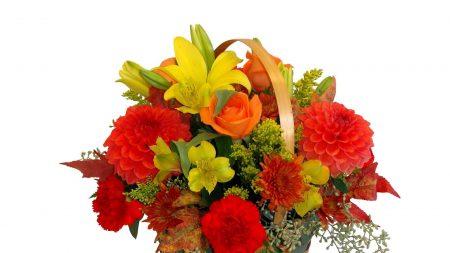 roses, carnations, dahlias