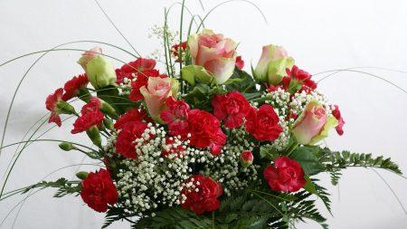 roses, carnations, flowers