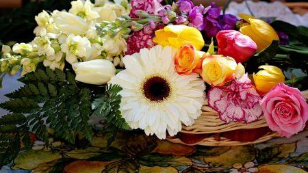 roses, carnations, gerberas