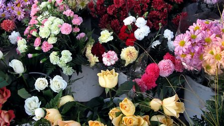 roses, chrysanthemums, carnations