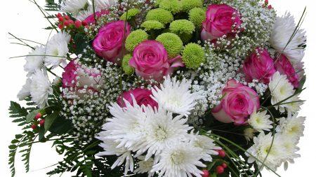 roses, chrysanthemums, gypsophila