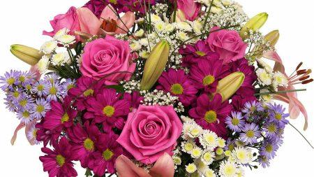 roses, chrysanthemums, lilies