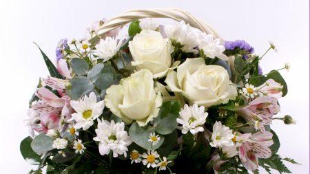roses, daisies, alstroemeria