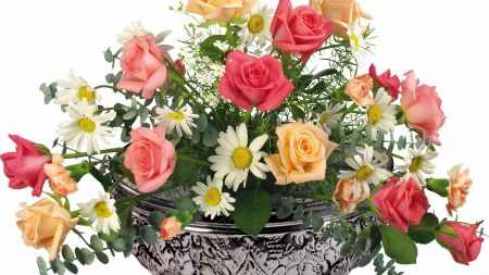 roses, daisies, carnations