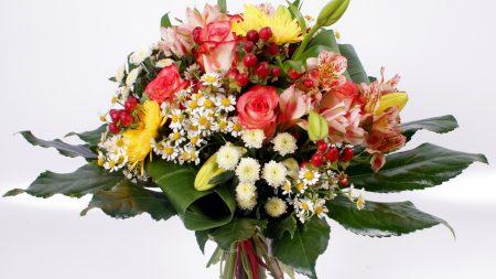 roses, daisies, chrysanthemums