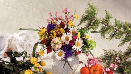 roses, daisies, flowers