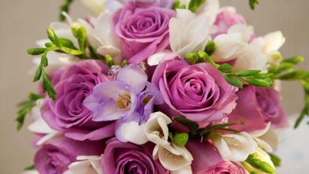 roses, flower, bouquet