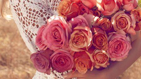 roses, flower, girl