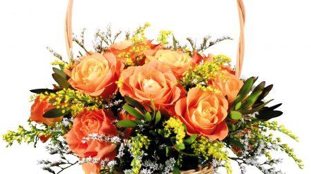 roses, flowers, arrangement