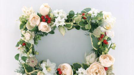 roses, flowers, berries