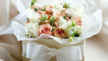 roses, flowers, box