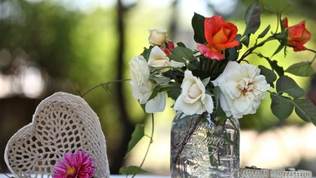 roses, flowers, bud