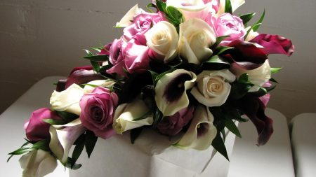 roses, flowers, calla lilies