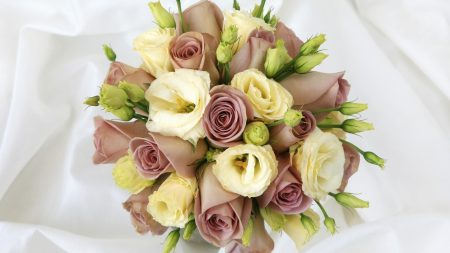 roses, flowers, lisianthus russell