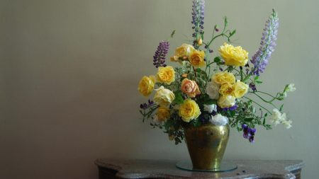 roses, flowers, lupine
