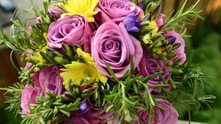roses, freesia, flowers