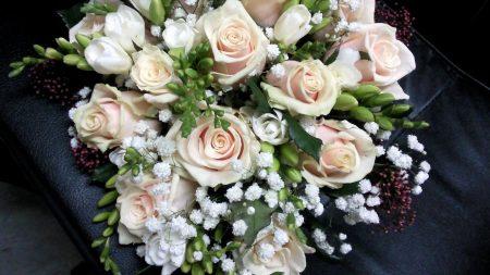 roses, freesia, gypsophila