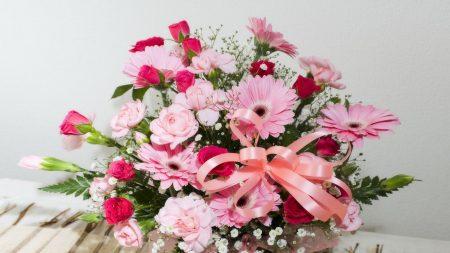 roses, gerbera, flower