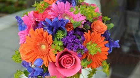 roses, gerbera, flowers